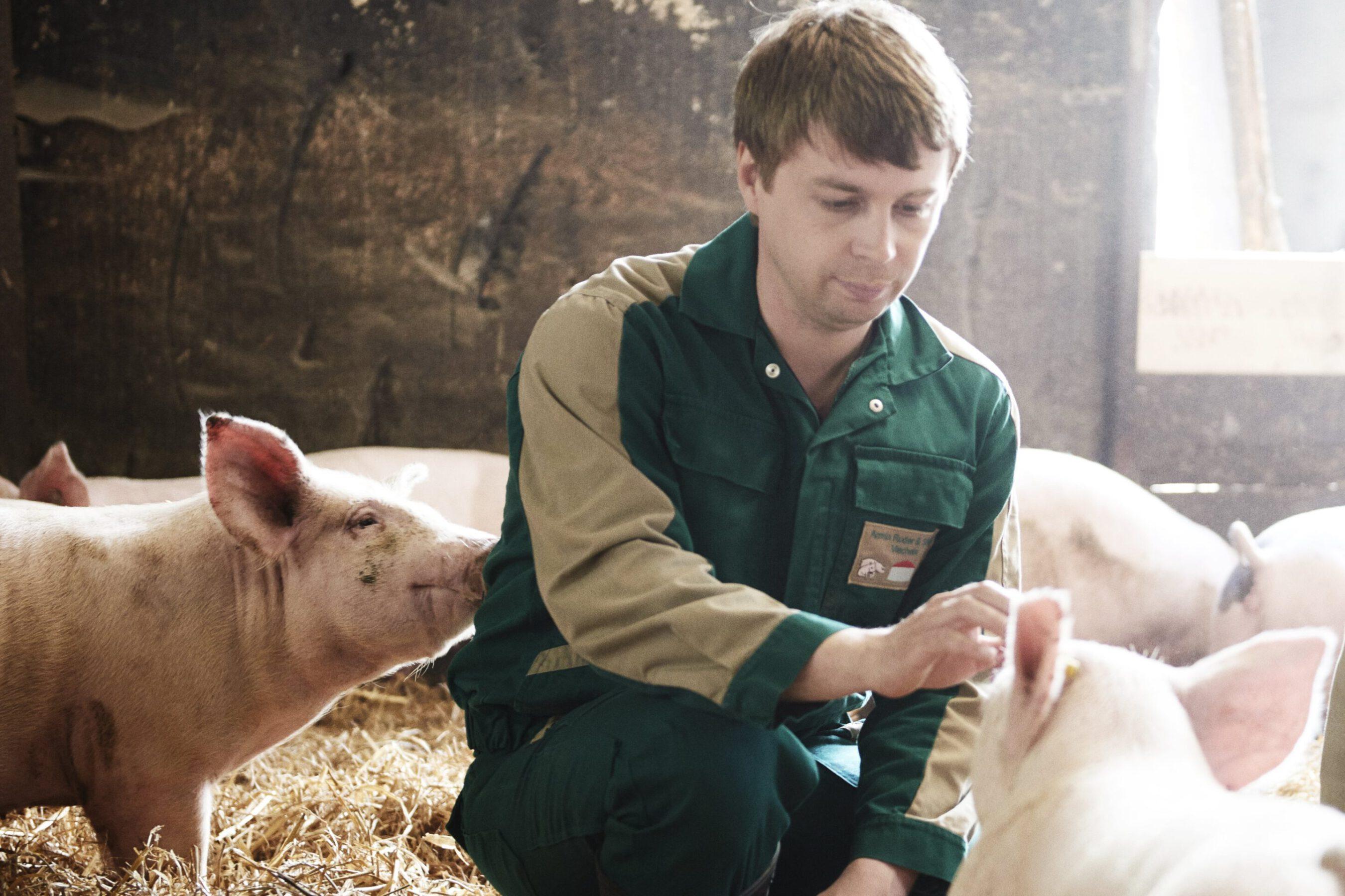 Strohschwein mit Produzent-min